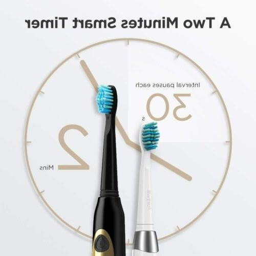 Dual Sonic Toothbrush Rechargeable 8 Brush